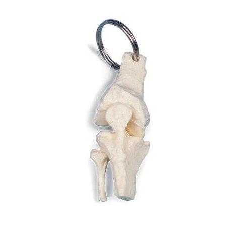 Přívěšek na klíče - lidský kolenní kloub