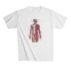 Anatomické tričko - lidský nervový systém