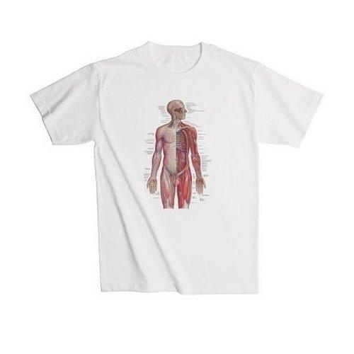 Anatomické tričko - lidský nervový systém - L