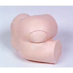 Simulátor pro vyšetření per rectum