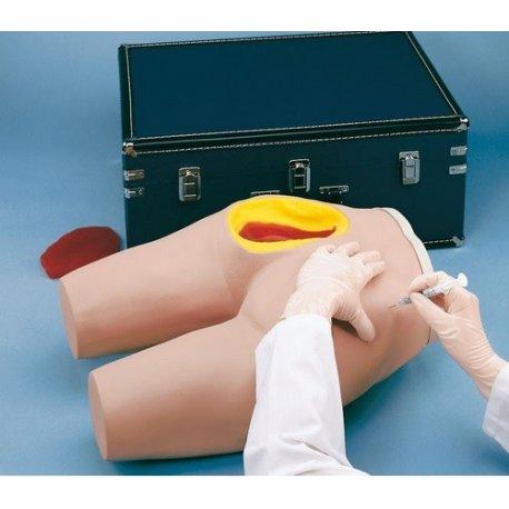 Simulátor pro nácvik intramuskulární injekce