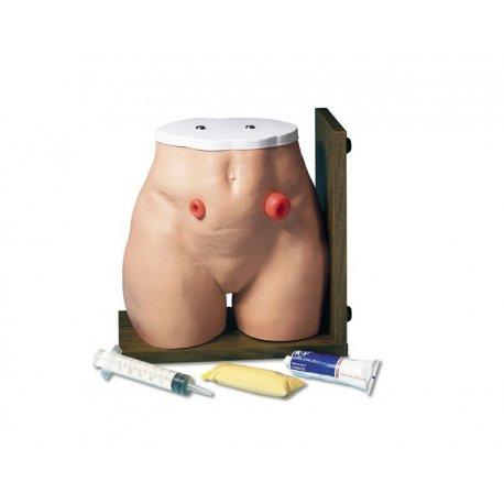 Simulátor péče o stomii - dospělý člověk