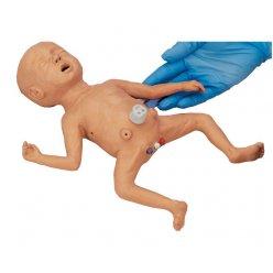 Model předčasně narozeného dítěte