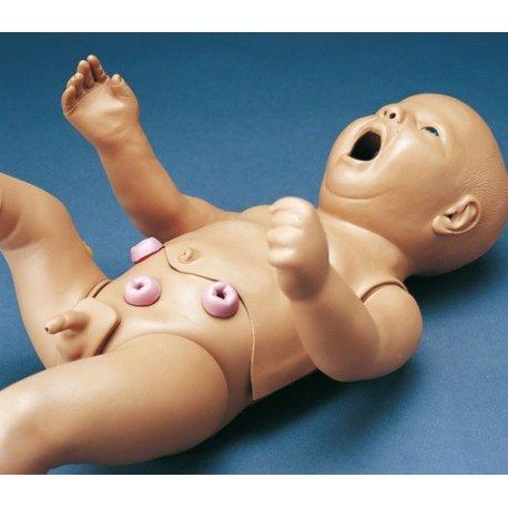 Ošetřovatelský model novorozence