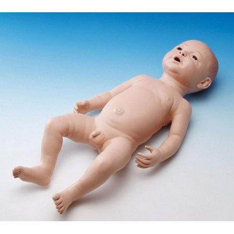 Ošetřovatelský model novorozence - mužský