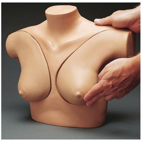 Simulátor vyšetření ženských prsů