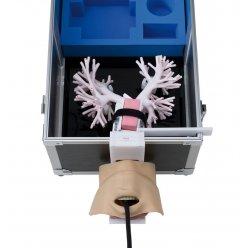 Simulátor ultrazvukového a bronchoskopického vyšetření