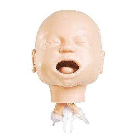 Model dýchacích cest novorozence - hlava