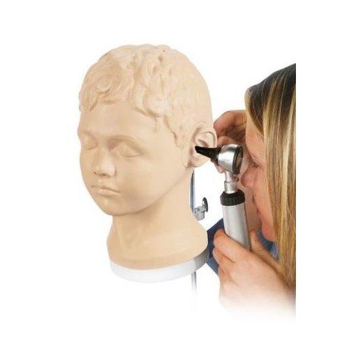 Diagnostický a vyšetřovací model ucha
