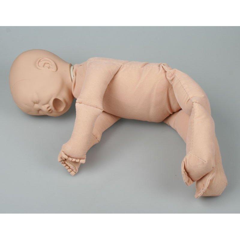Model lidského plodu - varianta bez placenty