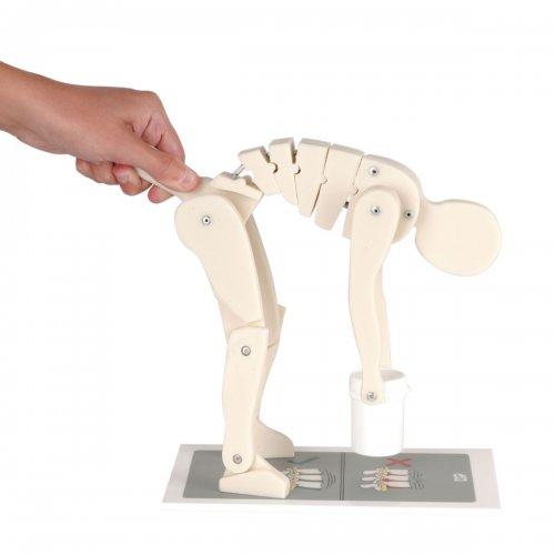 Zvedání břemene - figurína