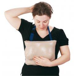 Model ženských prsů