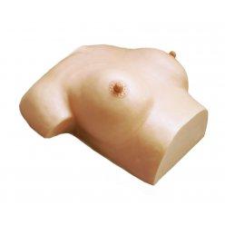 Masážní model prsů