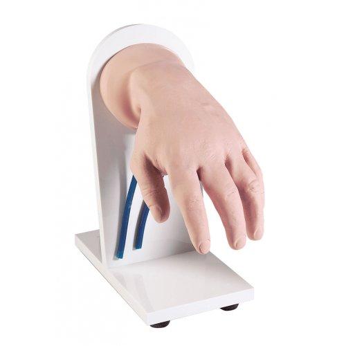 Model lidské ruky pro simulaci intravenózní injekce