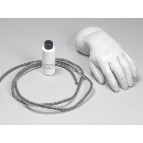 Náhradní kůže a žíly pro model EZ - R10005