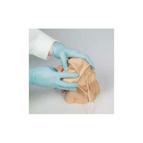 Náhradní kůže a žíly pro model EZ - R10008