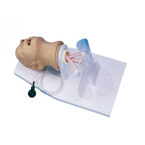 Model dospělé hlavy pro intubaci
