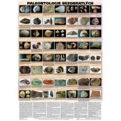 Schéma - Paleontologie bezobratlých