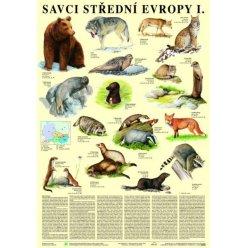 Schéma - Savci střední Evropy I - Šelmy