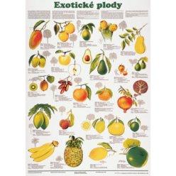 Schéma - Exotické plody