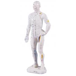 Čínská figurína muže pro akupunkturu - 26 cm