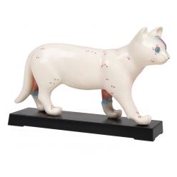 Model kočky s akupunkturními body